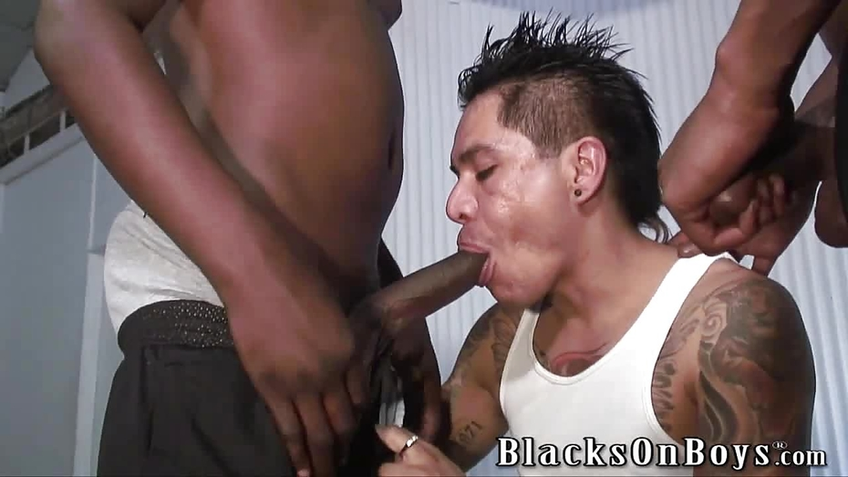 Black guys fuck mexican, most disgusting picture ever porn